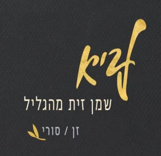 לוגו לביא.JPG